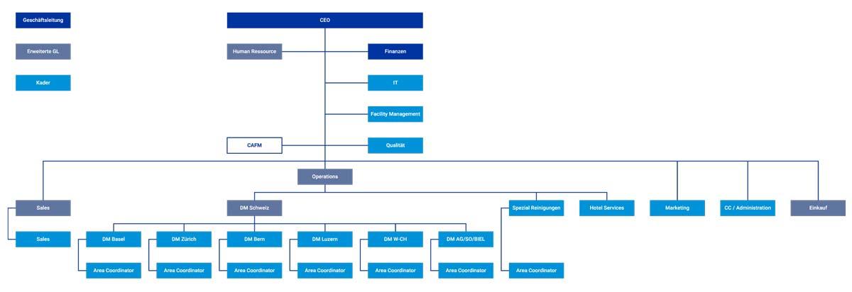 Organisation von Stampfli als Organigramm